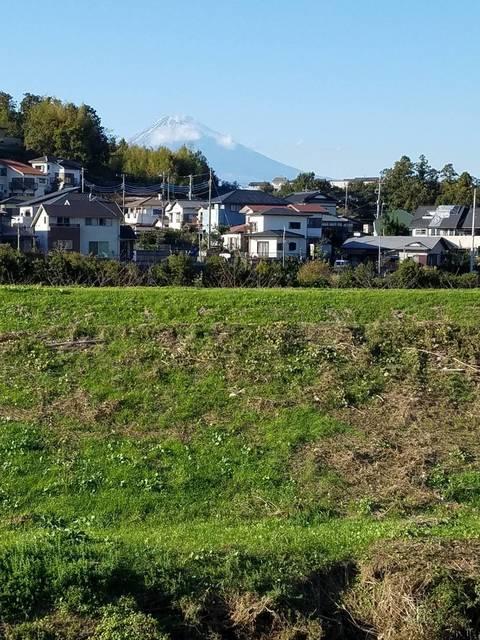 柿沢川水位跡.jpg