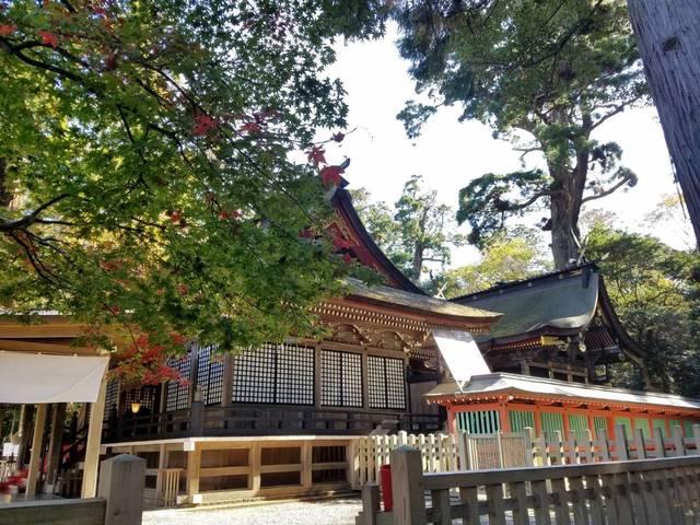 鹿島神本殿.jpg